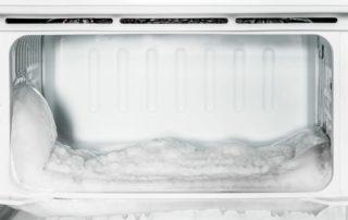 traitement punaises de lit froid