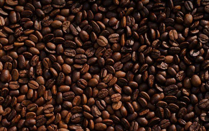 le cafe contre les punaises de lit